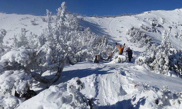 New Years Day skiing