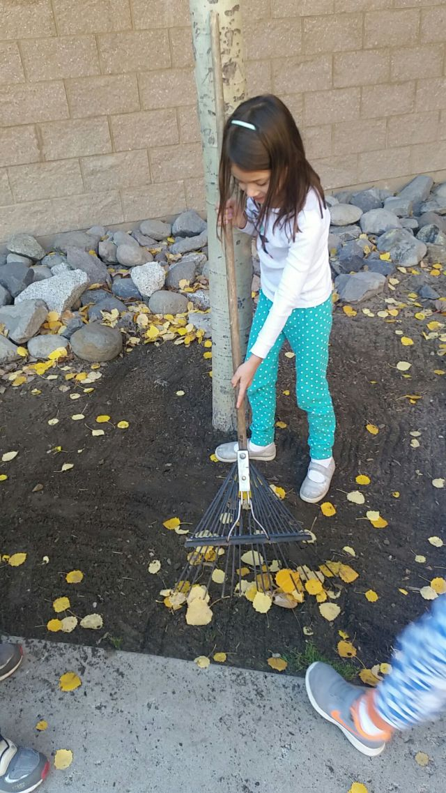 november-14-2016-raking-in-pjs