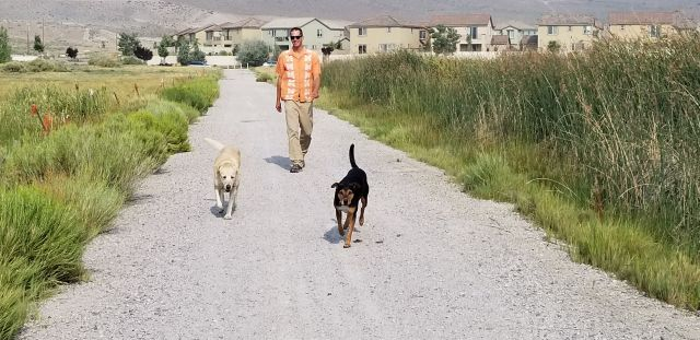 August 3 2018 dog walk